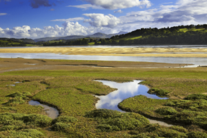 Things To Do In North Wales This Mothers Day - RSPB Conwy Nature Reserve Llandudno Jct, N Wales Expy, Conwy LL31 9XZ 01492 584091 - Mother's! Enjoy a free day out at RSPB Conwys Nature Reserve this mother's day. March 22nd 2020